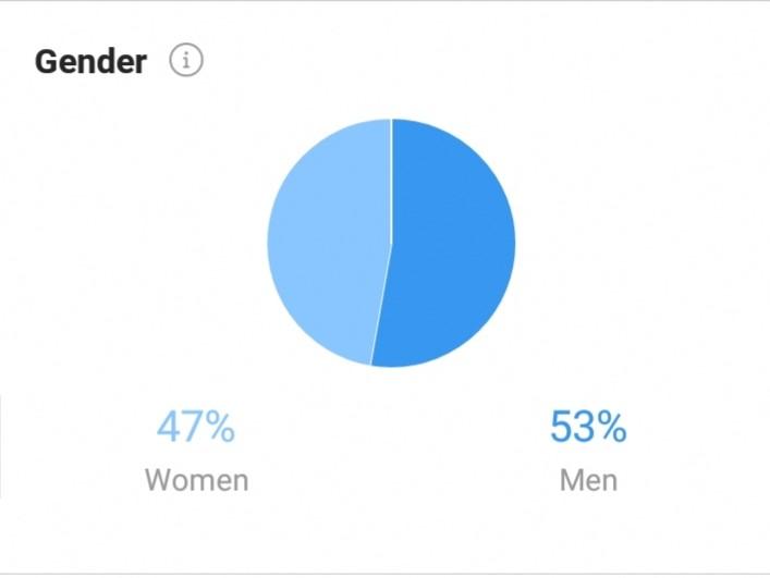Instagram Business Acount -Gender