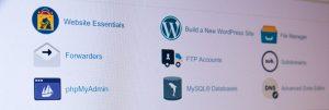 best website hosting for small business