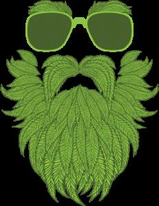 marijuana marketing 2020
